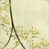 Fond embrouillé de cadre de fleur Photographie stock libre de droits