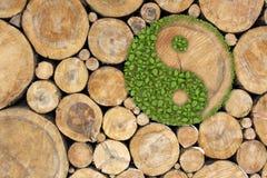 Fond empilé de logarithmes naturels avec ying yang Photographie stock