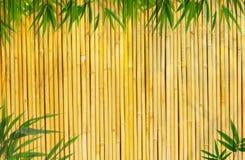 Fond en bambou Images stock