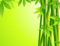 Fond en bambou illustration de vecteur