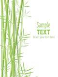 Fond en bambou Photo libre de droits