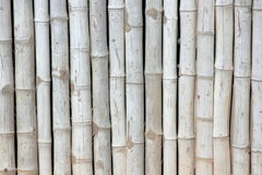 Fond en bambou Image stock