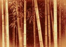 Fond en bambou Photo stock