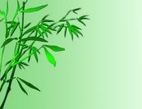 Fond en bambou chanceux Photographie stock libre de droits