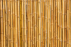 Fond en bambou de barrière Photos stock