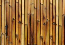 Fond en bambou de brûlure Photo libre de droits