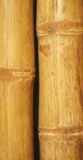 Fond en bambou de mur Photographie stock