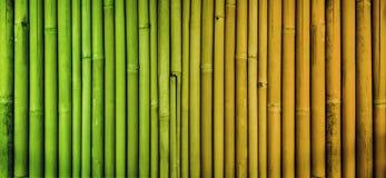 Fond en bambou de texture, mur en bambou fané de barrière, bambou de processus vieillissant Images stock