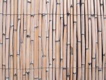 Fond en bambou fané criqué pâle de barrière de plein cadre vieux images stock