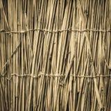 Fond en bambou fortement détaillé Texture naturelle parfaite photos libres de droits