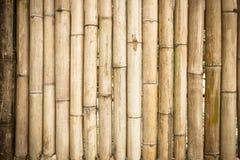 Fond en bambou jaune grunge et texture Photo libre de droits
