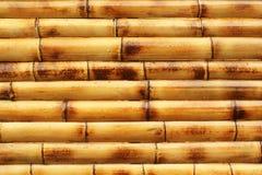 Fond en bambou jaune humide de mur Photos stock