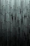 Fond en bambou noir et blanc Photographie stock
