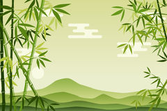 Fond en bambou vert abstrait Image stock