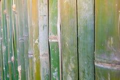 Fond en bambou vert de texture de barrière Photographie stock