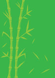 Fond en bambou vert de vecteur Photos stock