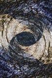 Fond en bois abstrait de texture Images libres de droits