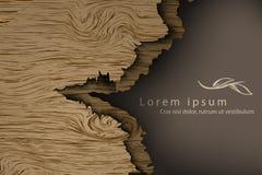 Fond en bois avec des ombres Images libres de droits