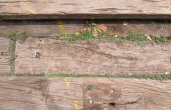 Fond en bois avec l'herbe Image libre de droits