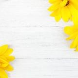 Fond en bois avec les fleurs jaunes images stock