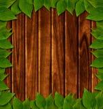 Fond en bois avec les lames vertes Photos libres de droits
