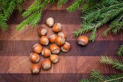 Fond en bois avec les noisettes et l'arbre de sapin Photographie stock