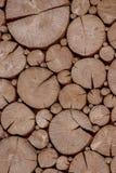Fond en bois avec les tranches rondes Photographie stock