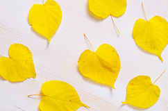 Fond en bois blanc avec les feuilles jaunes intéressantes Photo stock