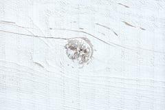 Fond en bois blanc de texture photographie stock libre de droits