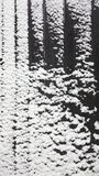 Fond en bois couvert de neige de vintage Photos stock