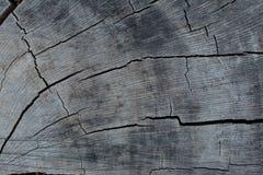 Fond en bois criqué photographie stock