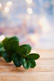 Fond en bois d'or de houx de boxus vert de Noël Image stock