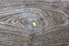 Fond en bois d'Oid Image stock