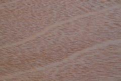 Fond en bois dans des tons bruns légers et foncés photos stock