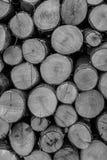 Fond en bois de coupes Photos stock