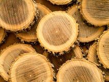 Fond en bois de log d'arbre image libre de droits