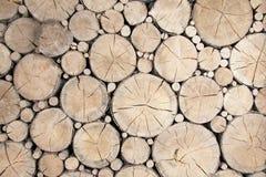 Fond en bois de logarithmes naturels Photographie stock libre de droits