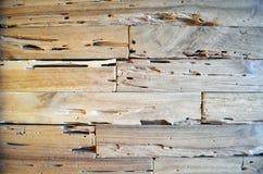 Fond en bois de mur de texture de vieux teck pour la conception et la décoration Texture du plan rapproché en bois de fond images libres de droits
