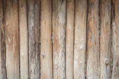 Fond en bois de nature de logarithme naturel Photo libre de droits