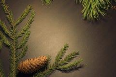 Fond en bois de nouvelle année Images stock
