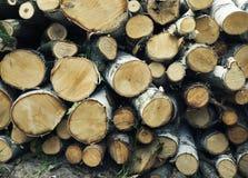 Fond en bois de pile Photos libres de droits