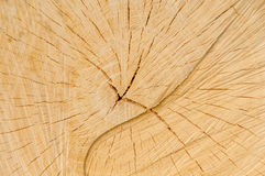 Fond en bois de planche Photo libre de droits