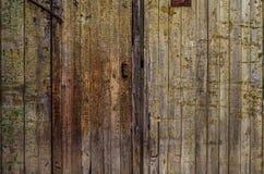 Fond en bois de porte Photo stock