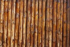 Fond en bois de rondin Images libres de droits