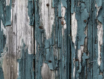 Fond en bois de Teal photographie stock
