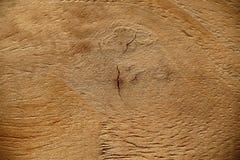 Fond en bois de teck Images libres de droits