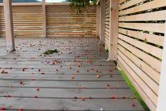 Fond en bois de terrasse avec des planches et beaucoup de petites pommes sauvages là-dessus images stock