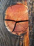 Fond en bois de texture Images libres de droits