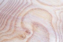 fond en bois de texture d'arbre de cendre dans la macro pousse de lentille image stock