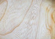 fond en bois de texture d'orme dans la macro pousse de lentille photo stock